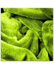 Cieplutki koc z mikrofibry zielony 160x200 cm