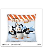 Poszewka na poduszkę Pingwiny z Madagaskaru 40 x 40 cm  w sklepie Dedekor.pl