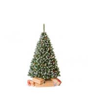 Świetna choinka Sosna Diamentowa - 180 cm