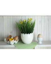 Półmisek na jajka